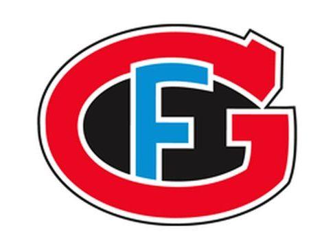 Logo des HC Fribourg-Gottéron