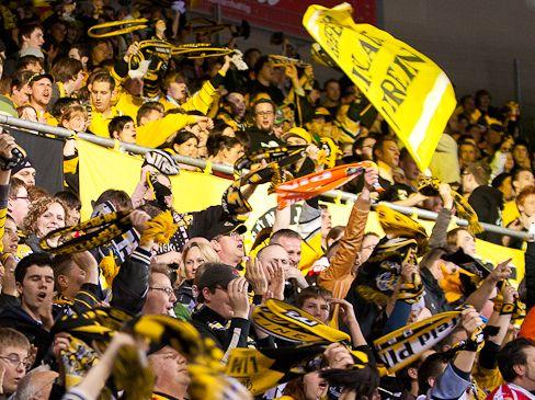 Die Fans der Krefeld Pinguine bekommen in dieser Saison wieder Playoff-Atmosphäre  geboten - © by (OM) Eishockey-Magazin