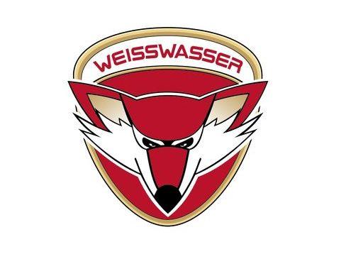 Logo der Lausitzer Füchse