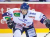 David Danner  - © by Eishockey-Magazin (SP)