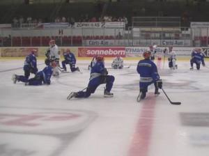 Auch die Roosters sind ab kommender Woche wieder im schweißtreibenden Trainingsbedtrieb - © by Eishockey-Magazin TV / Archiv