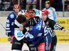 So wie hier mit Ingolstadts Jean-Francois Boucher (links) kennen und lieben die Iserlohner Fans Christian Hommel - © by Eishockey-Magazin (JB)