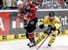 Kölns Andreas Holmqvist (links) und Kreflds Francois Methot - © by ISPFD (sportfotocenter.de)