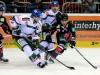 Zweikampf um die Scheibe - Augsburgs Woywitka gegen Düsseldorfs Ficenec © by Eishockey-Magazin (DR)