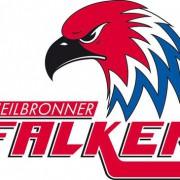 Zwei Youngster für die Heilbronner Falken