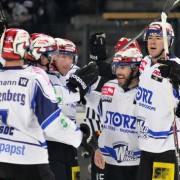 Wild Wings und Lindau kooperieren – Dominik Boháč komplettiert Verteidigung