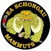 EA Schongau sichert sich die Bayernliga !