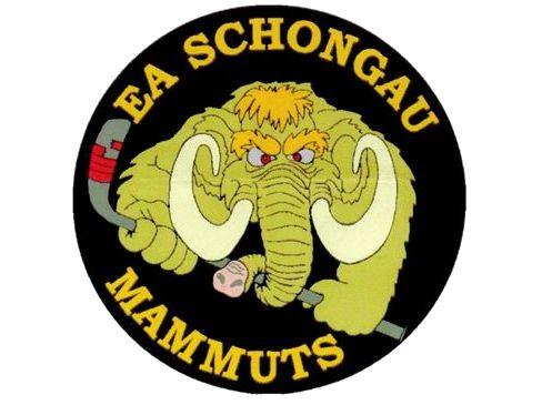 EA Schongau: Jetzt gilt es – konzentriert in die wichtigste Phase der Saison starten !