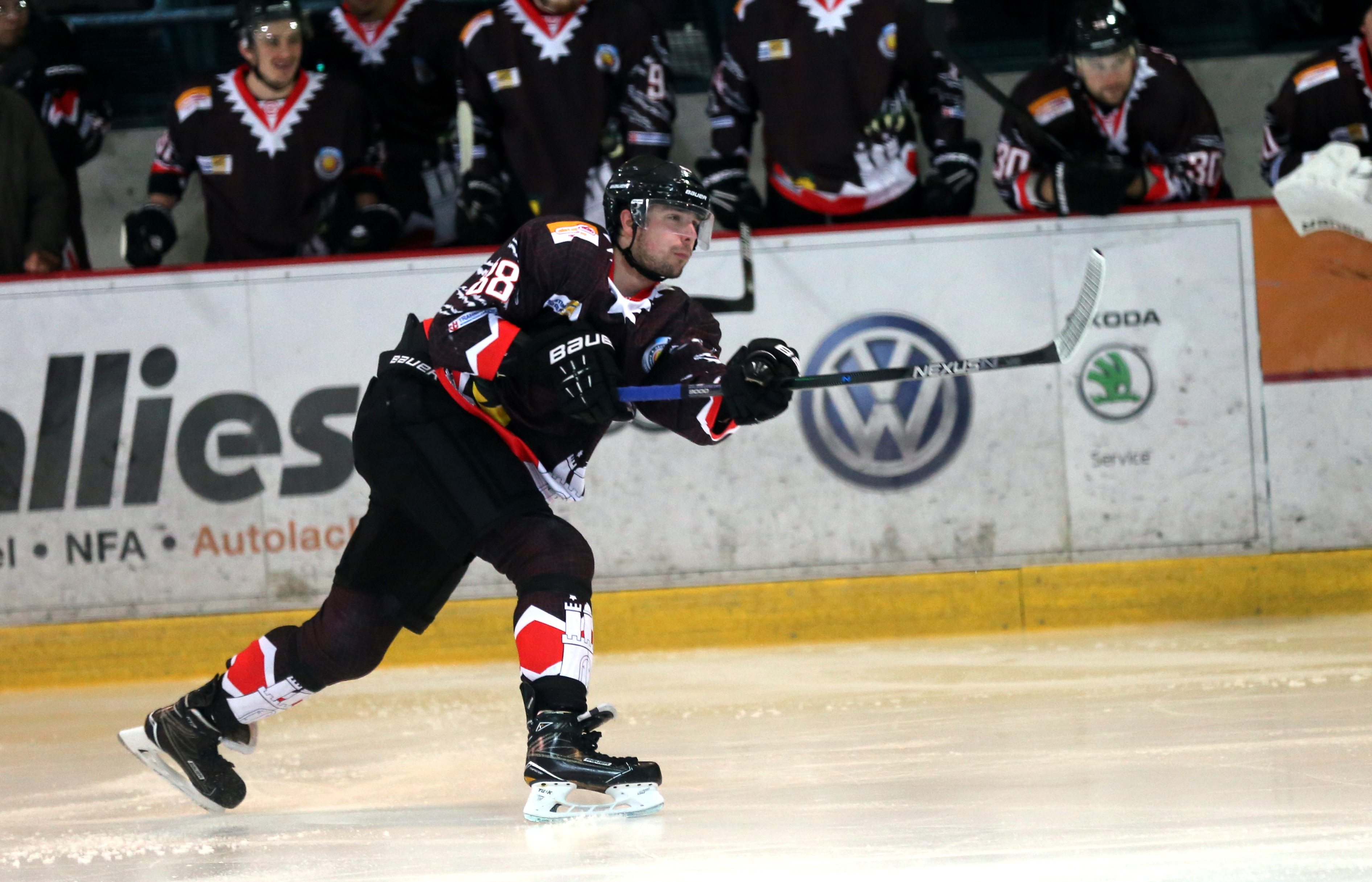eishockey in hamburg