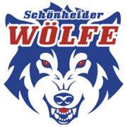 Wölfe gewinnen auch drittes Derby gegen Chemnitz