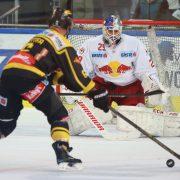 EBEL, 3. Spieltag: Bei Red Bull Salzburg ist der Wurm drin