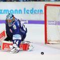 Mathias Lange hält zwei Punkte für die Roosters fest