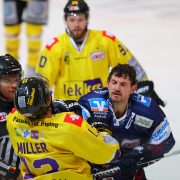 Pinguine halten Tim Miller
