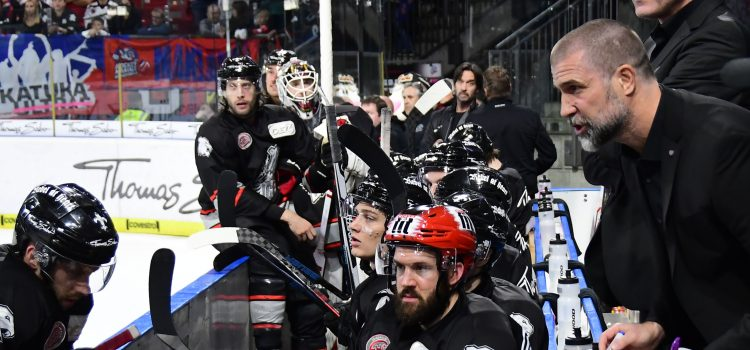 Ice Tigers verlieren Spiel im Schlussdrittel