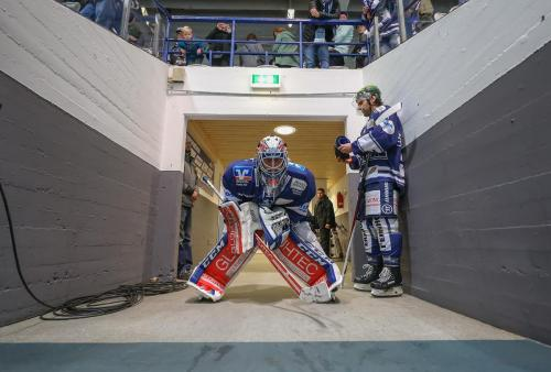 9. DEL Spieltag: Iserlohn Roosters - Augsburger Panther