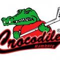 Rettungsaktion der Crocodiles gestartet