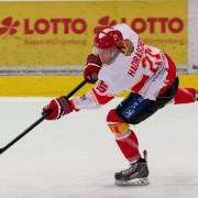 Max Hadraschek kommt aus Bad Nauheim zu den Wild Wings