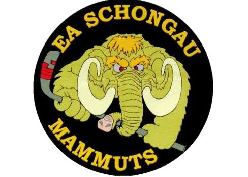 Mammuts verlieren im Landkreisderby