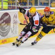 Steven Tarasuk zurück in Halle