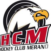 Die Adler aus Meran möchten in die Alps Hockey League fliegen