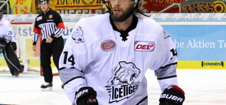 Thomas Sabo Ice Tigers Halten Tom Gilbert Eishockey Magazin