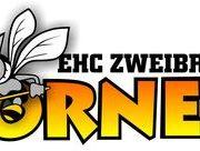 Calvin Engel wechselt zu den Hornets
