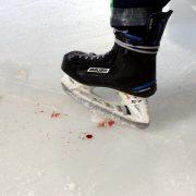 Sportwetten auch im Eishockey immer beliebter