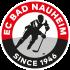 Rote Teufel Bad Nauheim besetzen Vorstandsposten neu