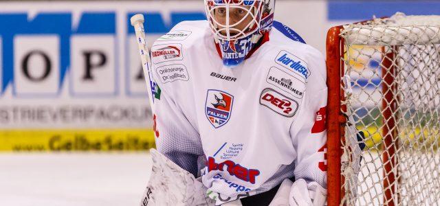 Heilbronner Falken kooperieren weiterhin mit den Adlern Mannheim
