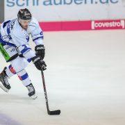 Playoffs ohne Krefeld! 0:1 Niederlage gegen die Straubing Tigers