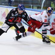 Vienna Capitals holen Dario Winkler nach Wien