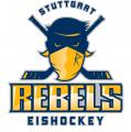 Dritte Eishalle im Stuttgarter Bürgerhaushalt auf 3. Platz – Eissportreibende Vereine: Rückenwind für Realisierung