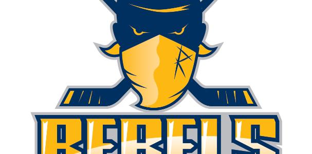 Stuttgarter Eishockey-Club qualifiziert sich für das SterneProgramm des Deutschen Eishockey-Bundes