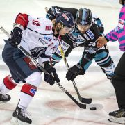 Sébastien Sylvestre verstärkt die Huskies