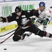 Wichtige Punkte! Ice Tigers gewinnen Derby gegen Augsburg