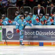 """Playoffs vor den Playoffs: DEG gegen """"Nachbarn"""" Bremerhaven und Ingolstadt"""