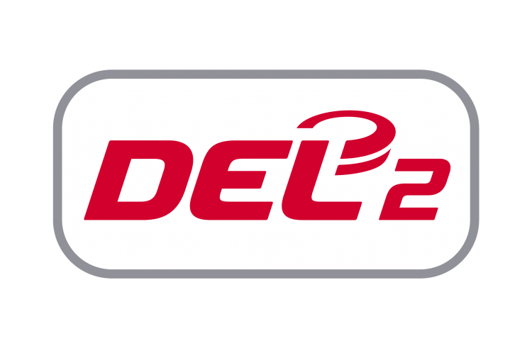 Erstes digitales DEL2-Fanbeauftragten-Treffen – Fanbeauftragten-Sprecher gewählt