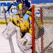 Tigers gegen Deggendorf in den Playdowns: Der Goalie-Check