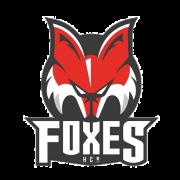 Fabio Armani ist der neue Assistant Coach der Foxes