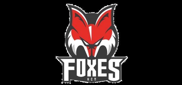 Ein Sieger der American Hockey League kommt nach Bozen – Dennis Robertson verstärkt die Defensive der Foxes
