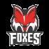 Gregorio Gios im Trikot der Foxes