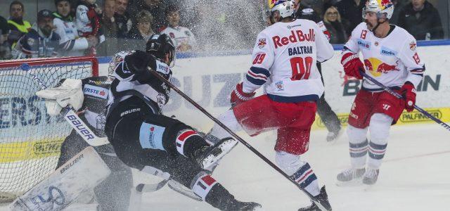 Znojmos Top-Torjäger und ein Nationalteamverteidiger verstärken die Black Wings