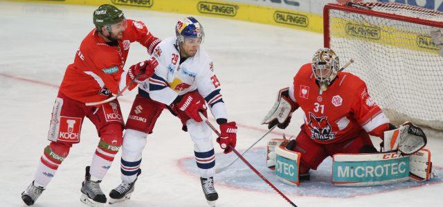 Ex-AHL-Verteidiger Matt MacKenzie vervollständigt Abwehr der Tölzer Löwen
