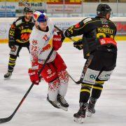 Löwen schlagen sich achtbar gegen Salzburg