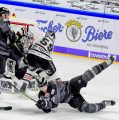 Starke Ice Tigers bezwingen Kölner Haie