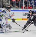 Ice Tigers begeistern im Derby gegen Straubing – Turnbull mit kuriosem Treffer ins eigene Tor