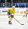 Ice Tigers statten 19- jähriges Verteidigertalent mit einem Dreijahresvertrag aus