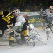 Bayreuth setzte die Serie guter Heimspiele fort