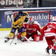 Saale Bulls Halle: Es fehlten 9 Sekunden zum Punktgewinn