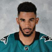 NHL-Spieler vom Las Vegas Casino für 500.000 Dollar verklagt